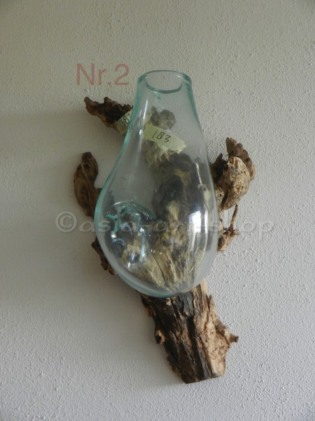 vase on root-wall-