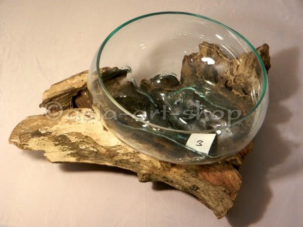 Glasschale auf Wurzel, medium