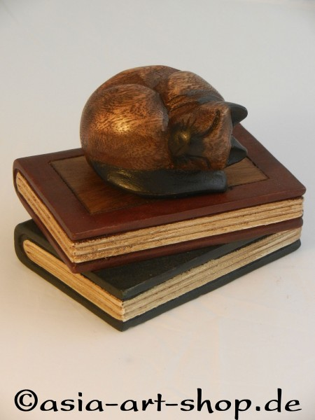 stacked books with tealight or sleeping cat