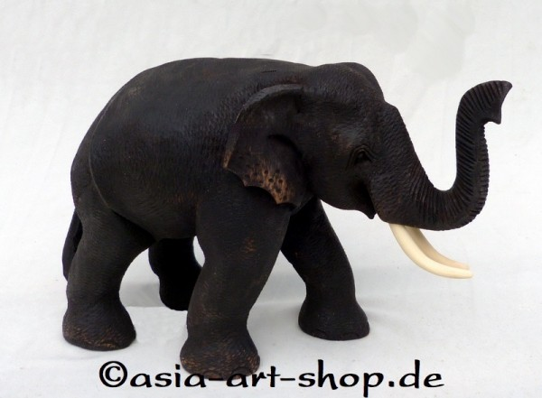 Teak Elefant XL